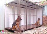 Забор для вольера собак – Ой!